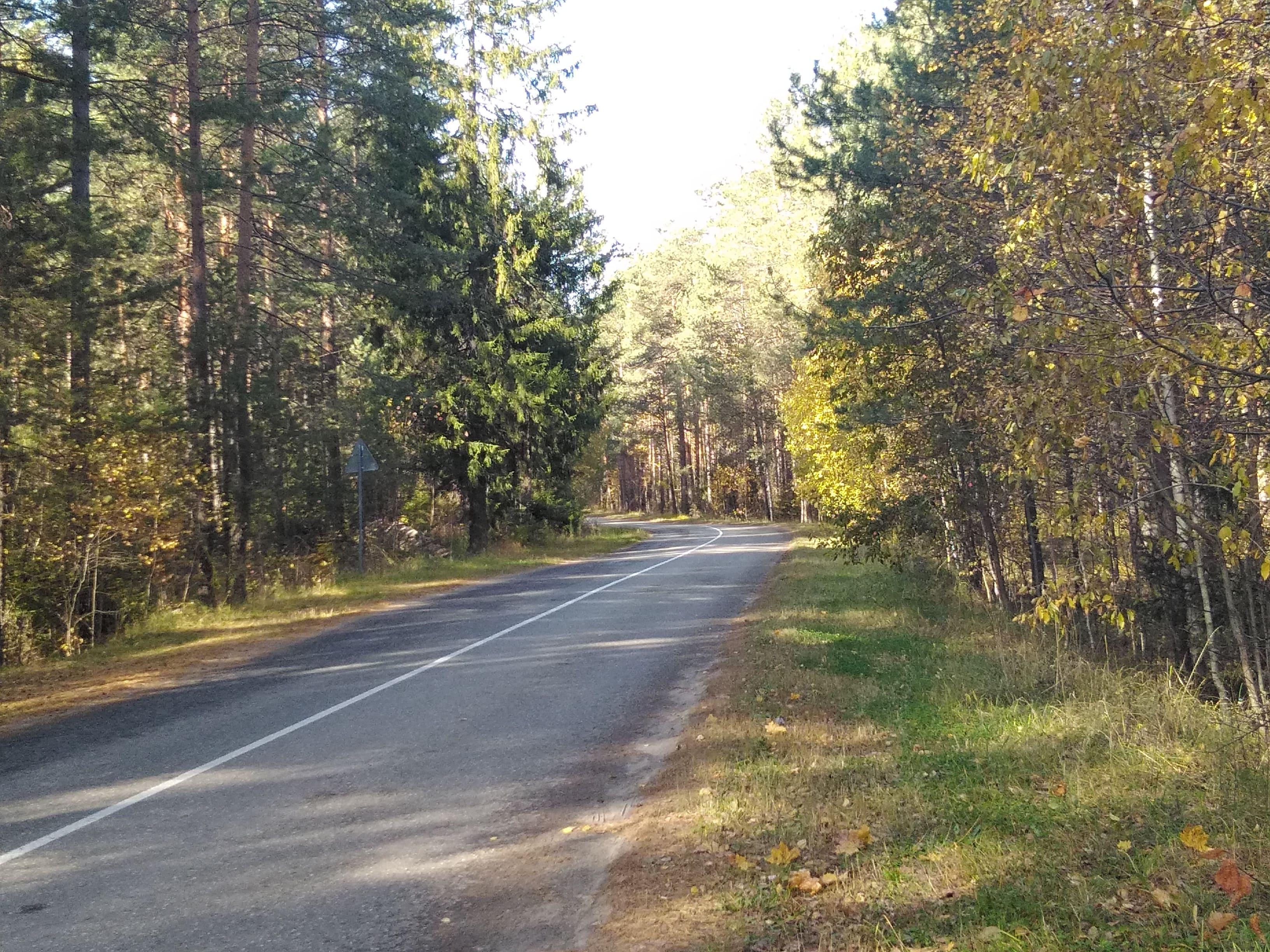 Дорога к святому источнику Серафима Саровского из д. Цыгановка