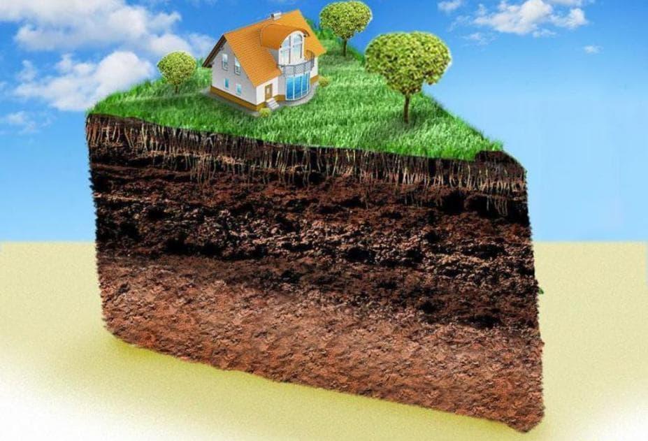 как рассчитать долю земельного участка в общей долевой собственности