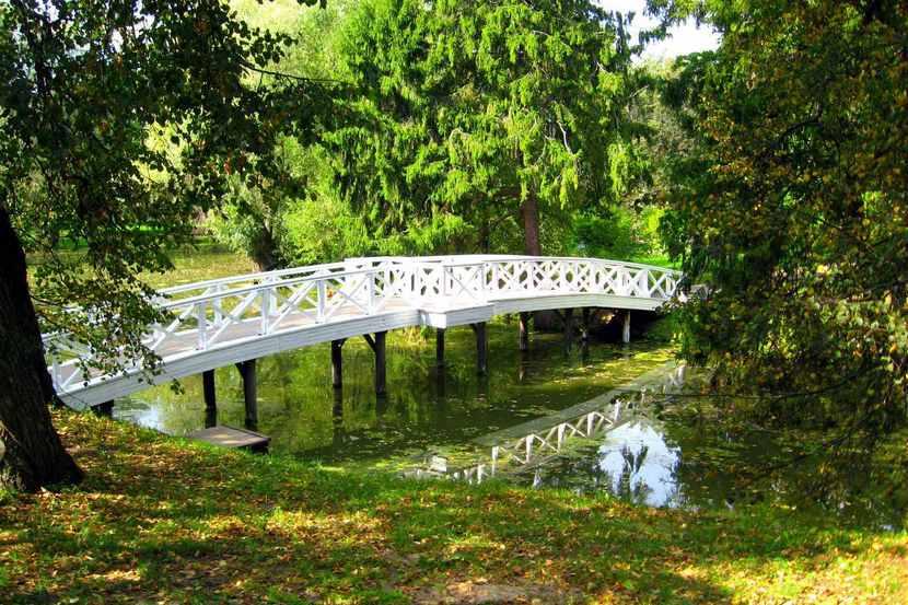 пушкинское болдино парк в музее-заповеднике сохранился старейший парк