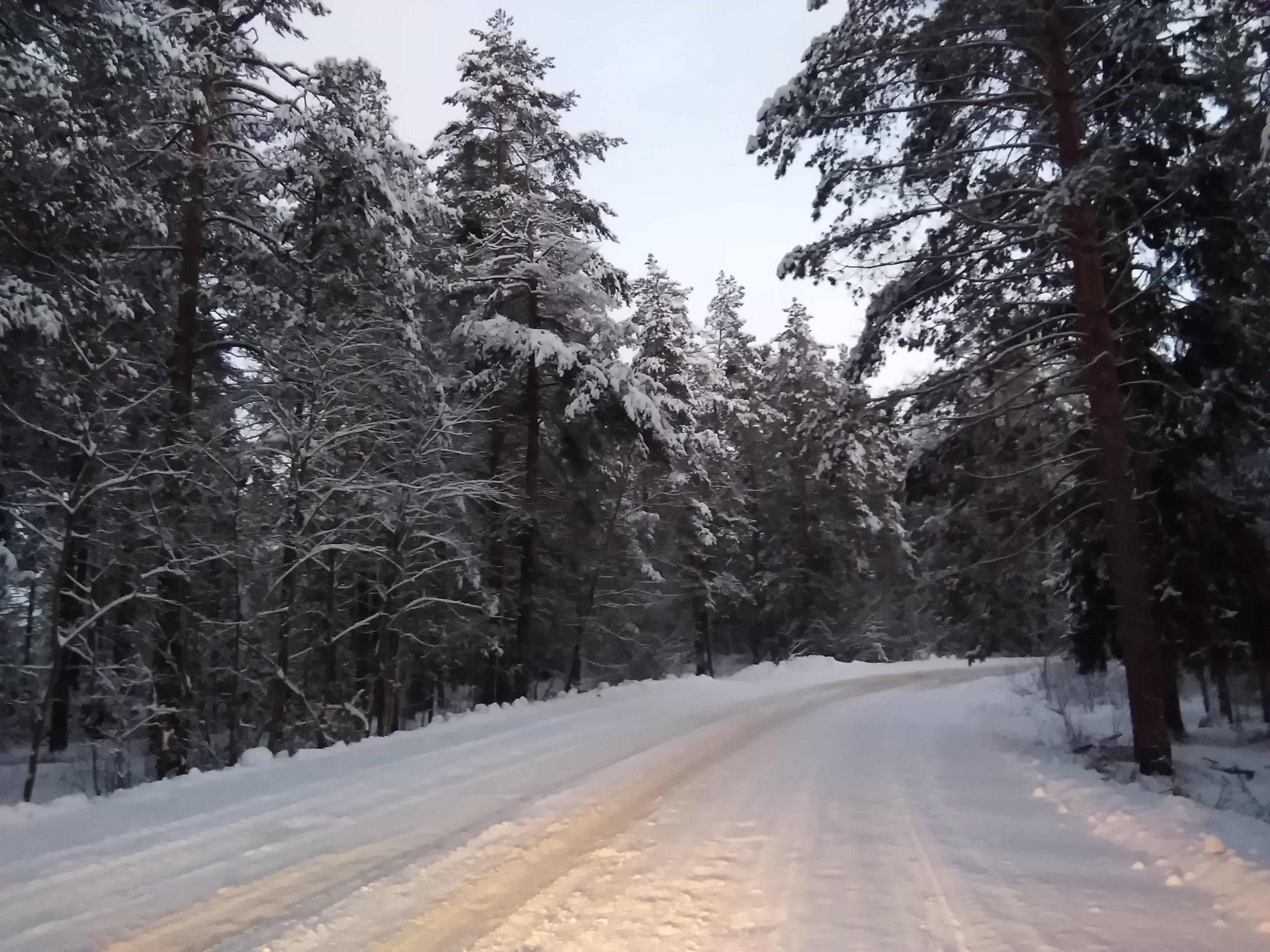 дивеево зимой стоит ли ехать отзывы