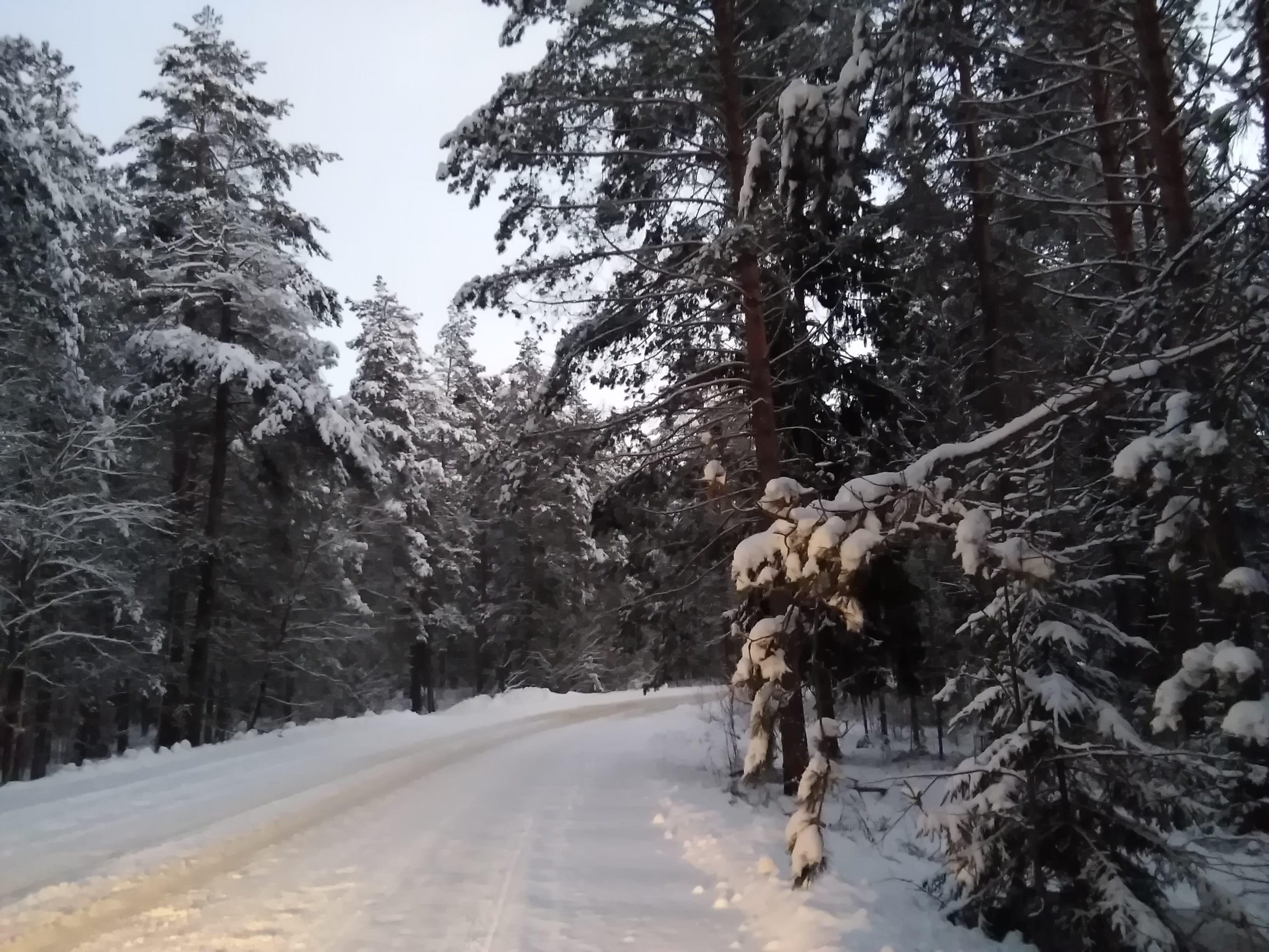 дивеево зимой