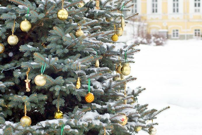 Стоит ли ехать на Новый Год в Дивеево