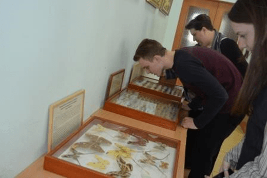 библиотека в дивеево